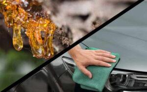 Cómo quitar la savia de árbol de su automóvil