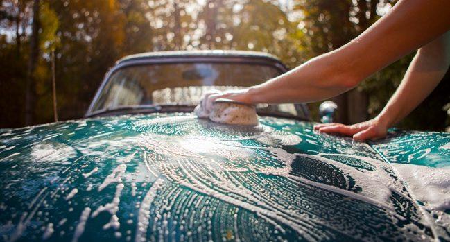 Retire la savia del árbol del automóvil